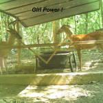 Girl Power B